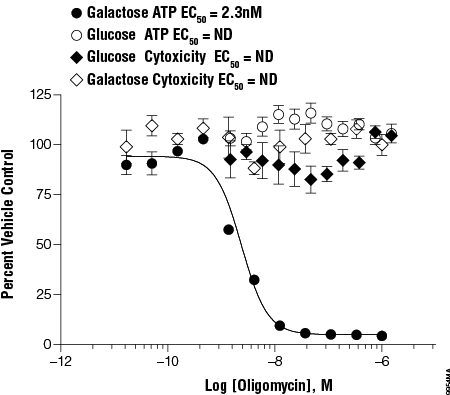 Mitochondrial responsiveness to a model mitochondrial toxin in the presence of galactose or glucose.