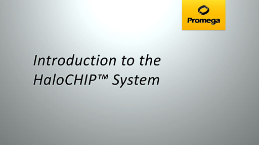 HaloCHIP System Animation